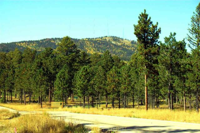 Lot 16 Ruby's Way, Lead, SD 57754 (MLS #48680) :: Christians Team Real Estate, Inc.