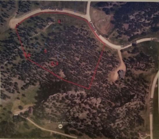 RR Cedar Berry Trail, Custer, SD 57730 (MLS #50337) :: Christians Team Real Estate, Inc.
