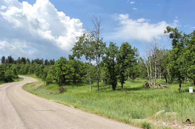 TBD Larkspur, Deadwood, SD 57732 (MLS #51740) :: Christians Team Real Estate, Inc.
