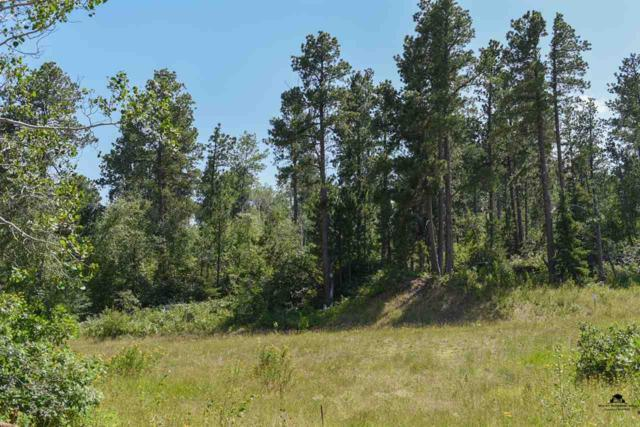 Lot 10 Bellefish II, Lead, SD 57754 (MLS #52200) :: Christians Team Real Estate, Inc.
