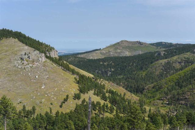 Lot 4 Golden Hills Subdivision, Deadwood, SD 57732 (MLS #52413) :: Christians Team Real Estate, Inc.