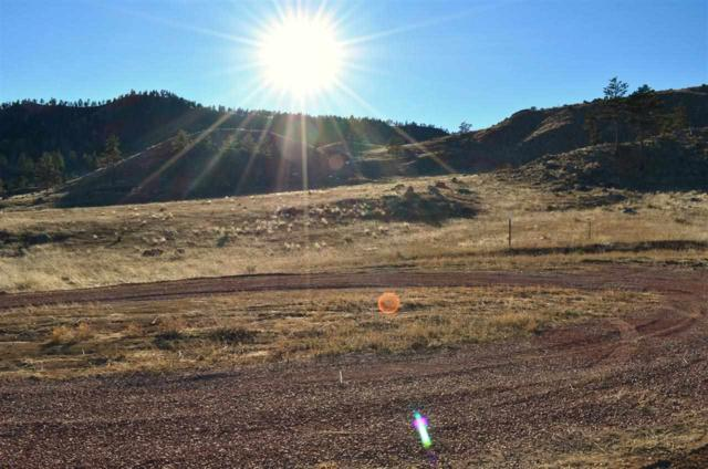 Sheps Canyon Estates Subd Lot 14, Hot Springs, SD 57747 (MLS #54111) :: Christians Team Real Estate, Inc.
