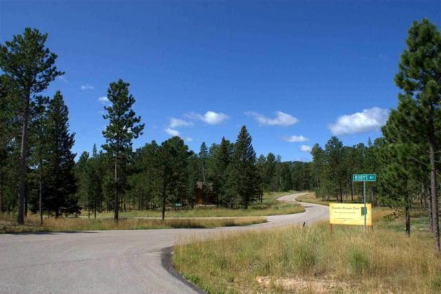 Lot 1 Block 2 Outlaw Pass, Lead, SD 57754 (MLS #54132) :: Christians Team Real Estate, Inc.