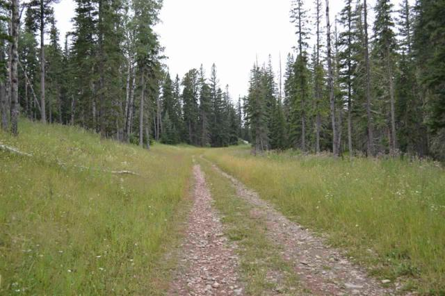 Lot 18A Woodland Springs Road, Lead, SD 57754 (MLS #54397) :: Dupont Real Estate Inc.