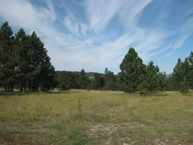 Lot 16, Block 2 Gobbler Road, Spearfish, SD 57783 (MLS #54632) :: Christians Team Real Estate, Inc.