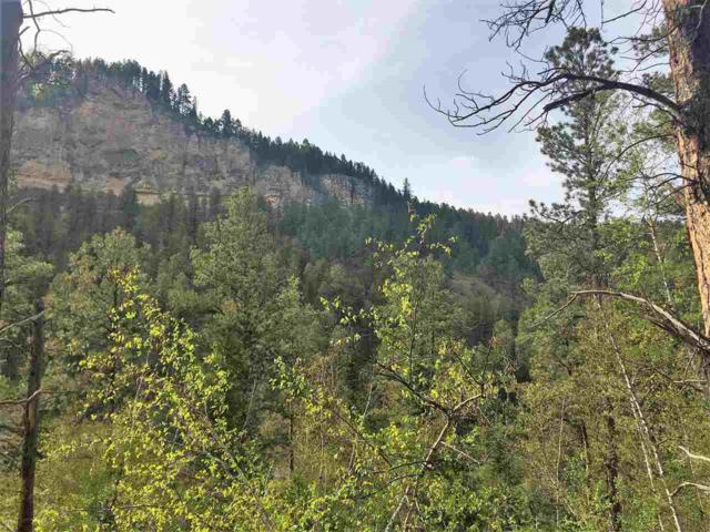 lot 3 Calamity Gulch Lane, Spearfish, SD 57783 (MLS #54908) :: Christians Team Real Estate, Inc.
