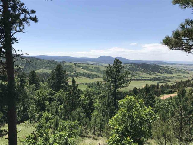 TBD Robbers Roost Rd., Spearfish, SD 57783 (MLS #55138) :: Christians Team Real Estate, Inc.