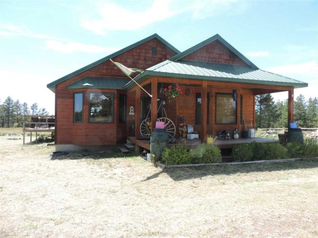 104 Wenger Road, Devils Tower, WY 82714 (MLS #55332) :: Christians Team Real Estate, Inc.