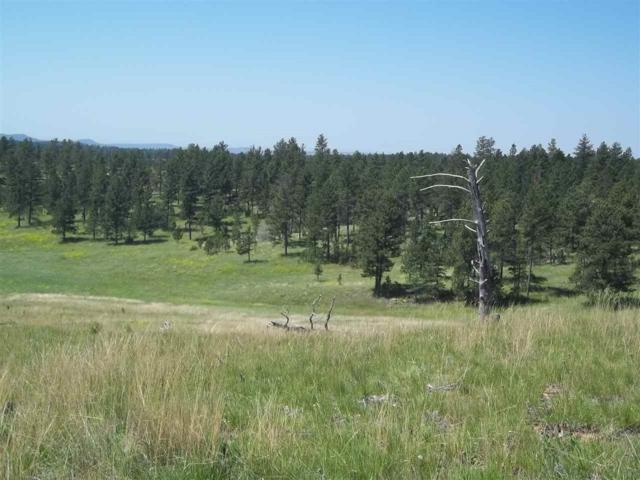 TBD South Park Dr, Custer, SD 57730 (MLS #55379) :: Christians Team Real Estate, Inc.