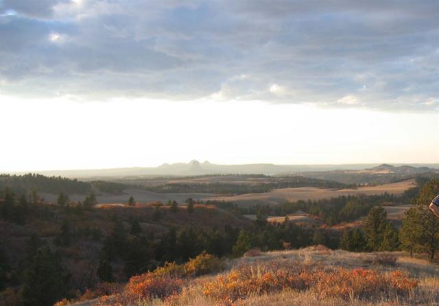 TBD Middle Fork Road, Devils Tower, WY 82714 (MLS #55483) :: Christians Team Real Estate, Inc.