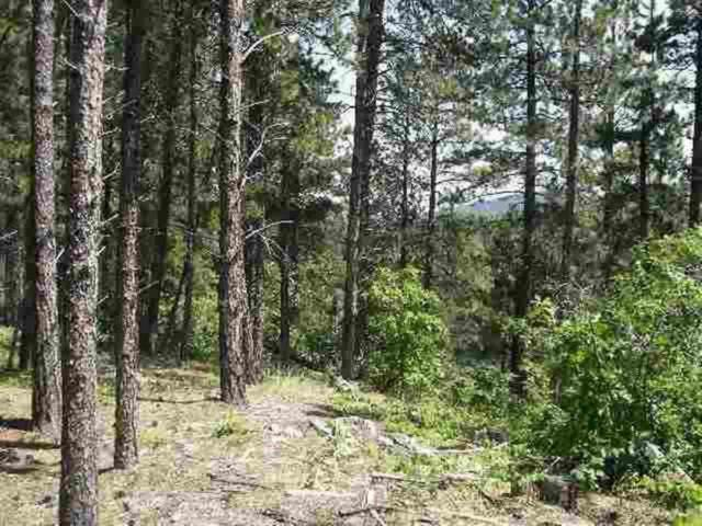 Lots 49 & 50 Aster Rd, Spearfish, SD 57783 (MLS #55999) :: Christians Team Real Estate, Inc.