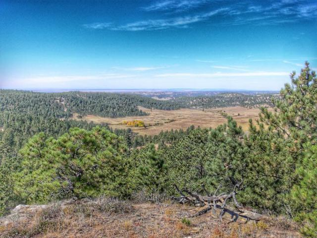 TBD Remington Rd., Sundance, WY 82729 (MLS #56001) :: Christians Team Real Estate, Inc.