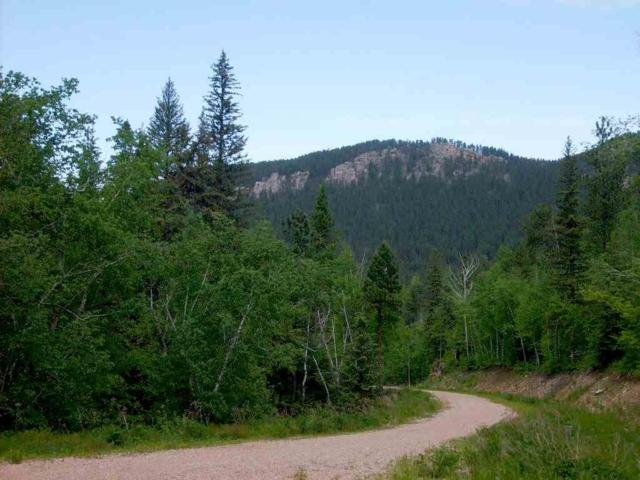Toboggan Hill Road, Spearfish, SD 57783 (MLS #56349) :: Christians Team Real Estate, Inc.