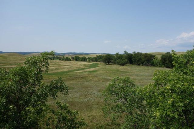 Other Rr Cobb Road, Hermosa, SD 57744 (MLS #56352) :: Dupont Real Estate Inc.