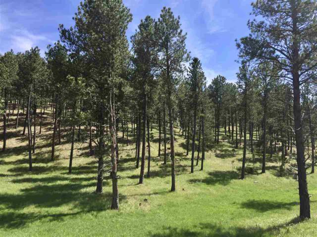 Lot 3 Caledonia Estates, Custer, SD 57730 (MLS #56458) :: Christians Team Real Estate, Inc.