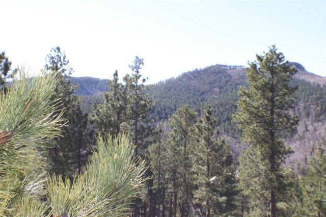 LOT 23 Estate At Pillar Peak Ii, Deadwood, SD 57732 (MLS #56673) :: Christians Team Real Estate, Inc.