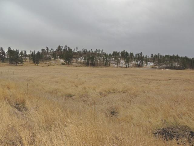 Tract 11 Katherine Court, Custer, SD 57730 (MLS #56701) :: Christians Team Real Estate, Inc.