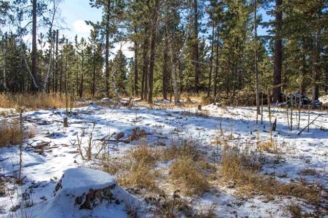 21380 Snowy Bluffs Road, Lead, SD 57754 (MLS #56861) :: Christians Team Real Estate, Inc.
