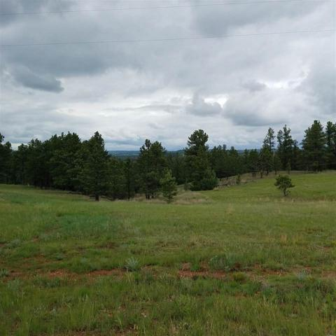 Trct A of Lot 3 Spirit Canyon Road, Hot Springs, SD 57747 (MLS #56999) :: Christians Team Real Estate, Inc.