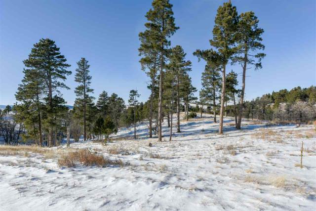 Lot 59 Valley View Circle, Spearfish, SD 57783 (MLS #57047) :: Christians Team Real Estate, Inc.