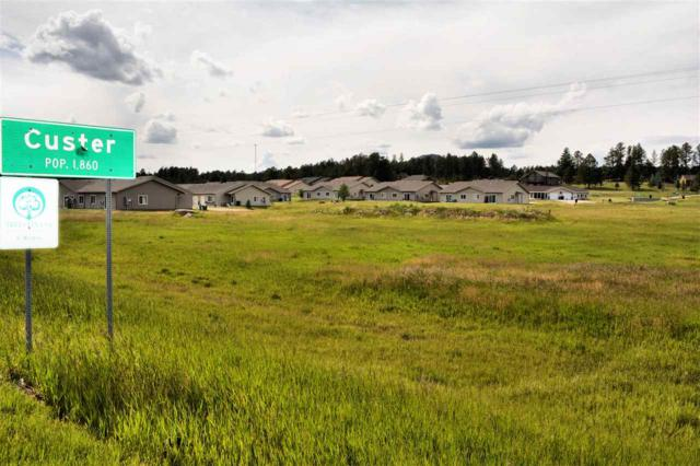 TBD Rodeo Ct, Custer, SD 57730 (MLS #57083) :: Christians Team Real Estate, Inc.