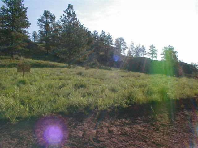 Lot 68 Cobblestone Mountain Estates, Hot Springs, SD 57747 (MLS #57158) :: Christians Team Real Estate, Inc.