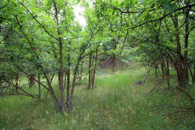 TBD Ranch Road, Deadwood, SD 57732 (MLS #57380) :: Christians Team Real Estate, Inc.