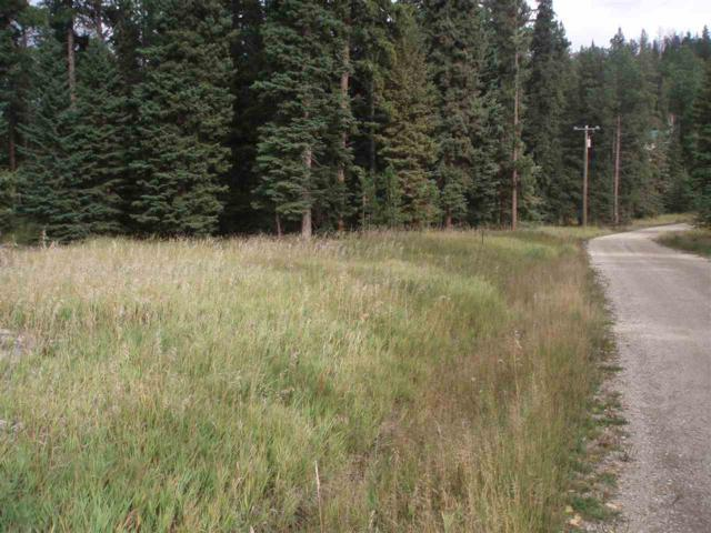 LOT 9A Spruce, Lead, SD 57754 (MLS #57444) :: Dupont Real Estate Inc.