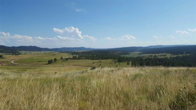TBD Darcy Drive, Custer, SD 57730 (MLS #57636) :: Christians Team Real Estate, Inc.