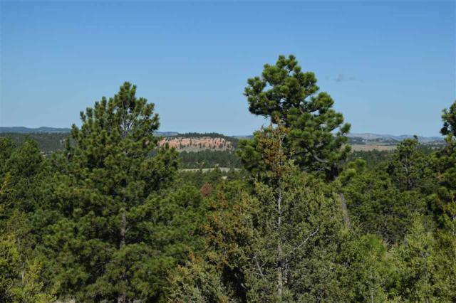 Lot 12 Big Sky, Hot Springs, SD 57747 (MLS #57639) :: Christians Team Real Estate, Inc.