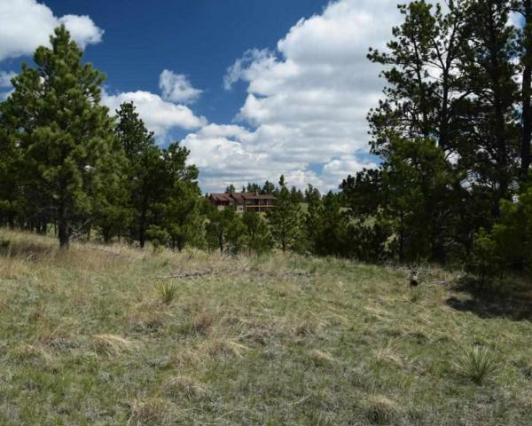 Lot 3 Prong Horn, Hot Springs, SD 57747 (MLS #57652) :: Christians Team Real Estate, Inc.
