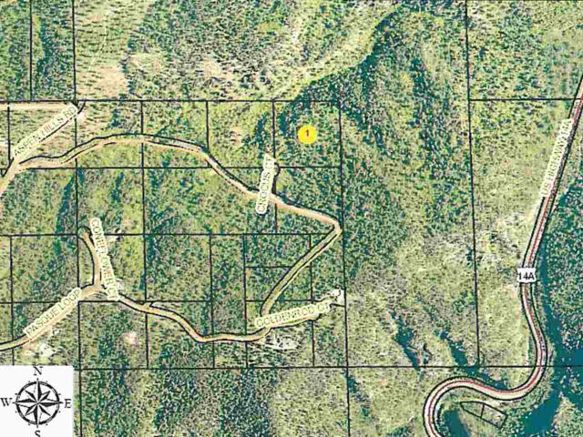 Tract 28 Crocus Court, Spearfish, SD 57783 (MLS #57653) :: Christians Team Real Estate, Inc.