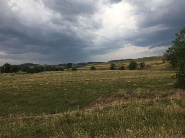 TBD Dry Creek Road, Hermosa, SD 57744 (MLS #57674) :: Dupont Real Estate Inc.