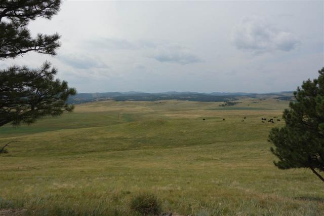 RR Rr Cobb Road, Hermosa, SD 57744 (MLS #57807) :: VIP Properties