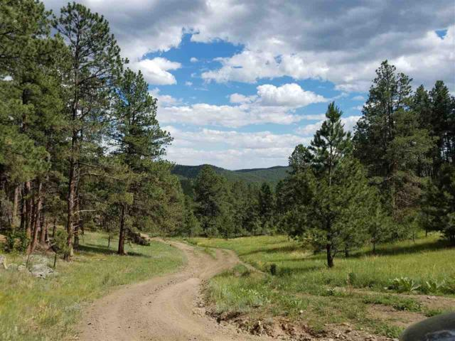 EUREKA LODE Schenk Road, Keystone, SD 57751 (MLS #57852) :: Christians Team Real Estate, Inc.