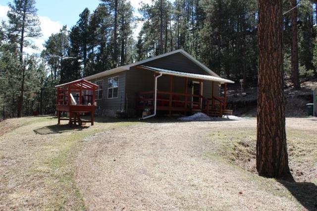21873 Big Elk Place, NEMO, SD 57759 (MLS #57931) :: Christians Team Real Estate, Inc.