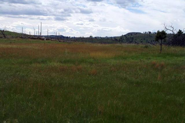 Lots 58-62 Black Hills Flyway Subdivision, Hot Springs, SD 57747 (MLS #57966) :: Christians Team Real Estate, Inc.