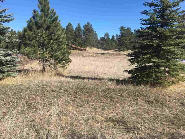 Lot 20, Block 5 Butte Court, Whitewood, SD 57793 (MLS #57975) :: Christians Team Real Estate, Inc.