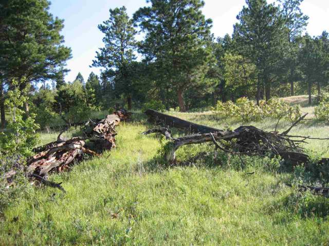 TBD Middle Fork Road, Devils Tower, WY 82714 (MLS #57990) :: Christians Team Real Estate, Inc.