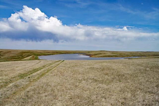 13446 E Ardmore Road, Oelrichs, SD 57763 (MLS #58023) :: Christians Team Real Estate, Inc.