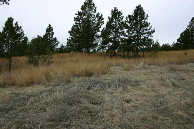 TBD Lot 25 Mountain Lion Lane, Custer, SD 57730 (MLS #58033) :: Christians Team Real Estate, Inc.