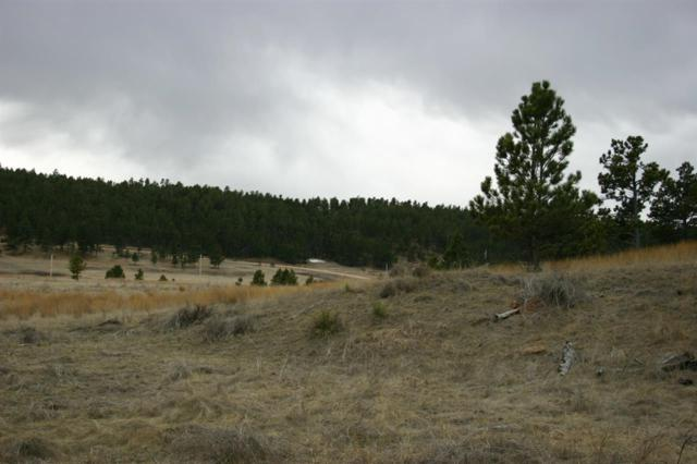 TBD Lot 26 Mountain Lion Lane, Custer, SD 57730 (MLS #58034) :: Christians Team Real Estate, Inc.