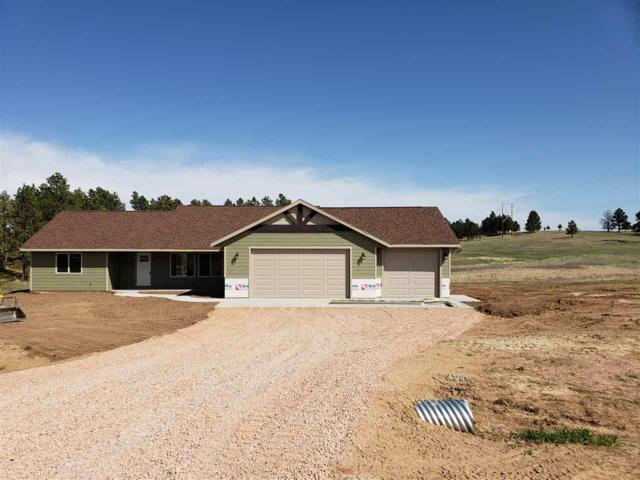 21642 Mcintosh Rd, Piedmont, SD 57769 (MLS #58050) :: Christians Team Real Estate, Inc.