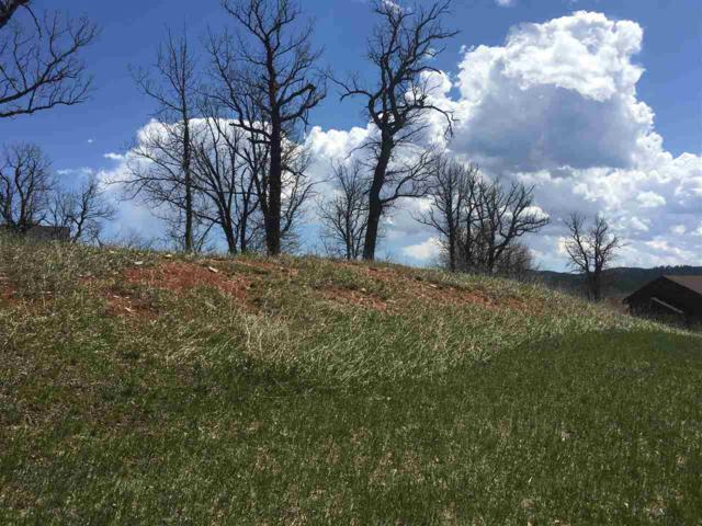 12257 Vacation Court, Sturgis, SD 57785 (MLS #58109) :: Christians Team Real Estate, Inc.