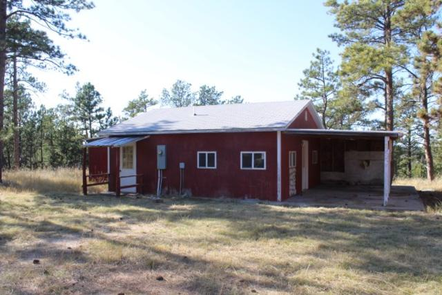 12007 Wolf Lane, Hot Springs, SD 57747 (MLS #58154) :: Christians Team Real Estate, Inc.