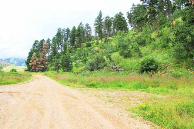 TBD Terry Gulch Road, Lead, SD 57754 (MLS #58156) :: Christians Team Real Estate, Inc.