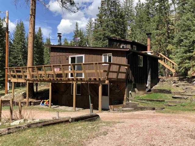 12141 Lower Elk Park Road, Custer, SD 57730 (MLS #58170) :: Christians Team Real Estate, Inc.