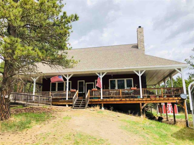 12466 Lizzie Lane, Custer, SD 57730 (MLS #58171) :: Christians Team Real Estate, Inc.