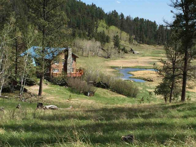 24662 Saginaw Road, Custer, SD 57730 (MLS #58187) :: Christians Team Real Estate, Inc.