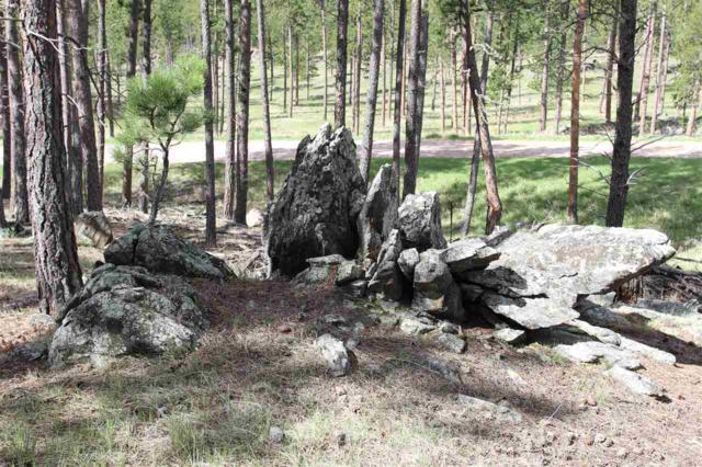 Lot 29 Castle Rock, Custer, SD 57730 (MLS #58212) :: Christians Team Real Estate, Inc.